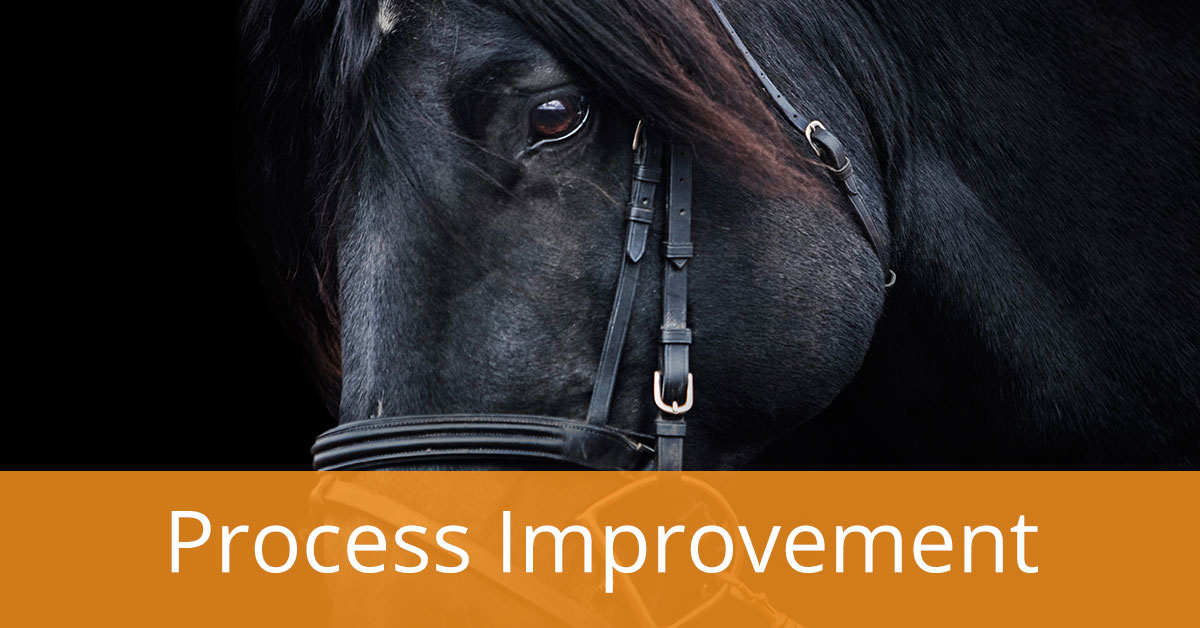 Process Improvement: The Profitability Dark Horse Explained in 8 Steps